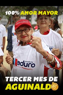 Tercer mes de aguinaldo pensionados 2019